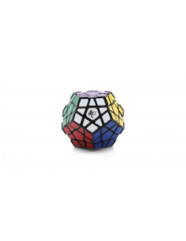 DaYan Dodecahedron Megaminx Puzzle Magic Cube